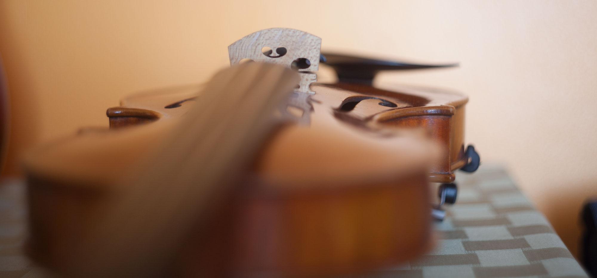 Joey Corpus Violinist